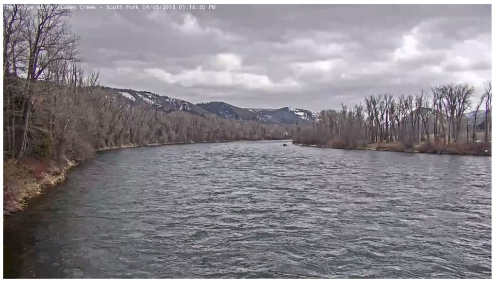South Fork Of The Snake River Fishing Report 4 5 18 The